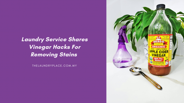 Laundry Service Shares Vinegar Hacks For Removing Stains